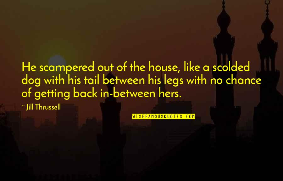 Scolded Quotes By Jill Thrussell: He scampered out of the house, like a