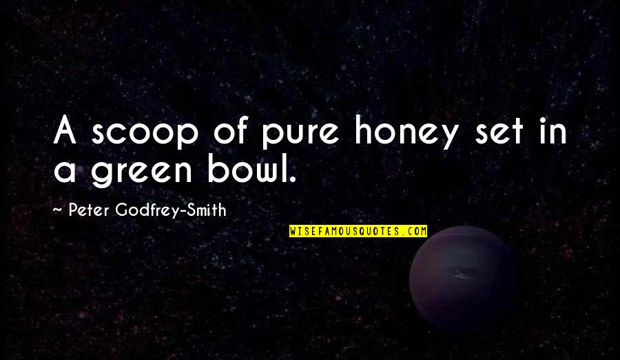 Scoop Up Quotes By Peter Godfrey-Smith: A scoop of pure honey set in a