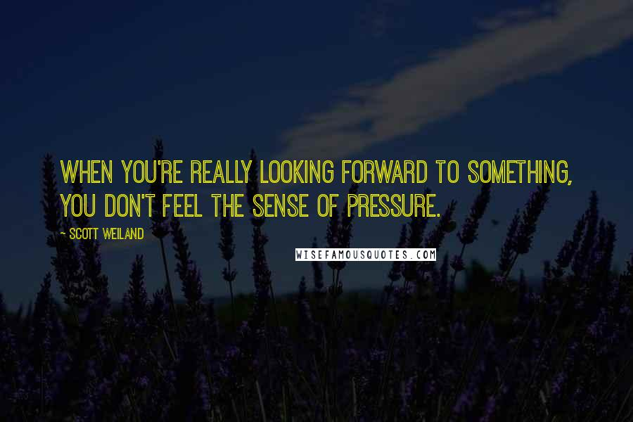 Scott Weiland quotes: When you're really looking forward to something, you don't feel the sense of pressure.