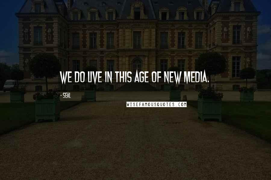 Seal quotes: We do live in this age of new media.