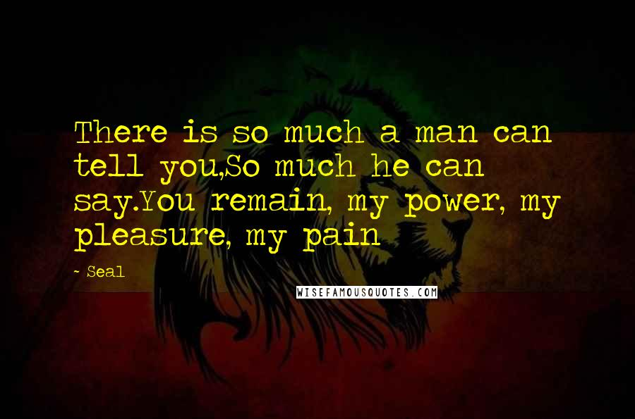 Seal quotes: There is so much a man can tell you,So much he can say.You remain, my power, my pleasure, my pain