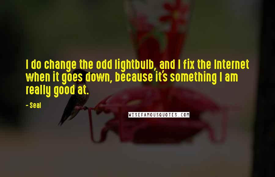 Seal quotes: I do change the odd lightbulb, and I fix the Internet when it goes down, because it's something I am really good at.