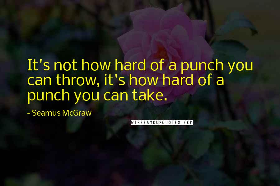Seamus McGraw quotes: It's not how hard of a punch you can throw, it's how hard of a punch you can take.
