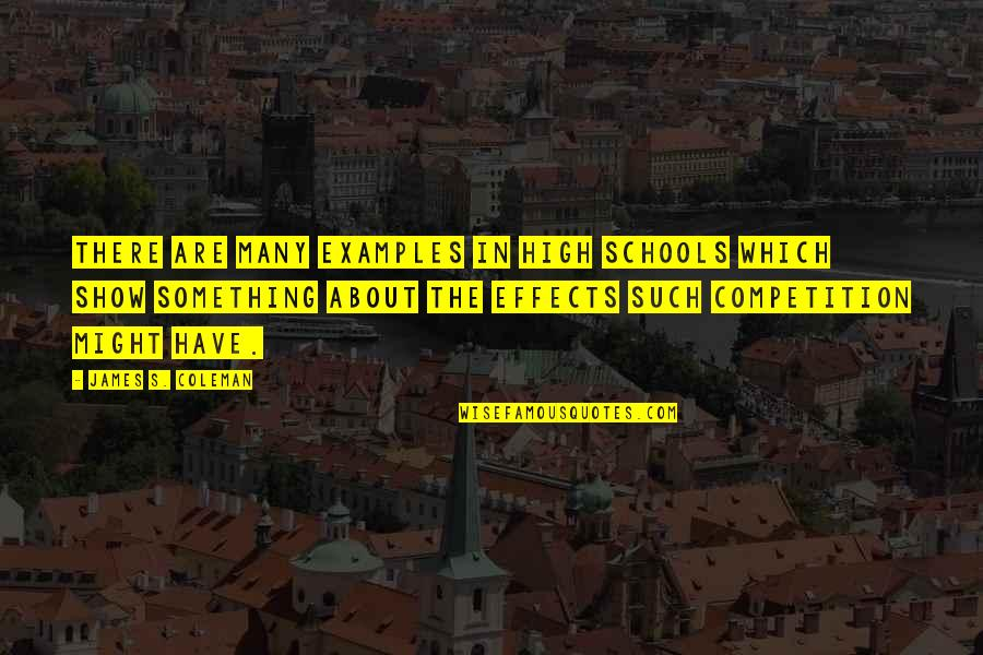 Sean Belnick Quotes By James S. Coleman: There are many examples in high schools which