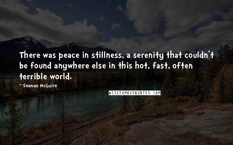 Seanan McGuire quotes: There was peace in stillness, a serenity that couldn't be found anywhere else in this hot, fast, often terrible world.