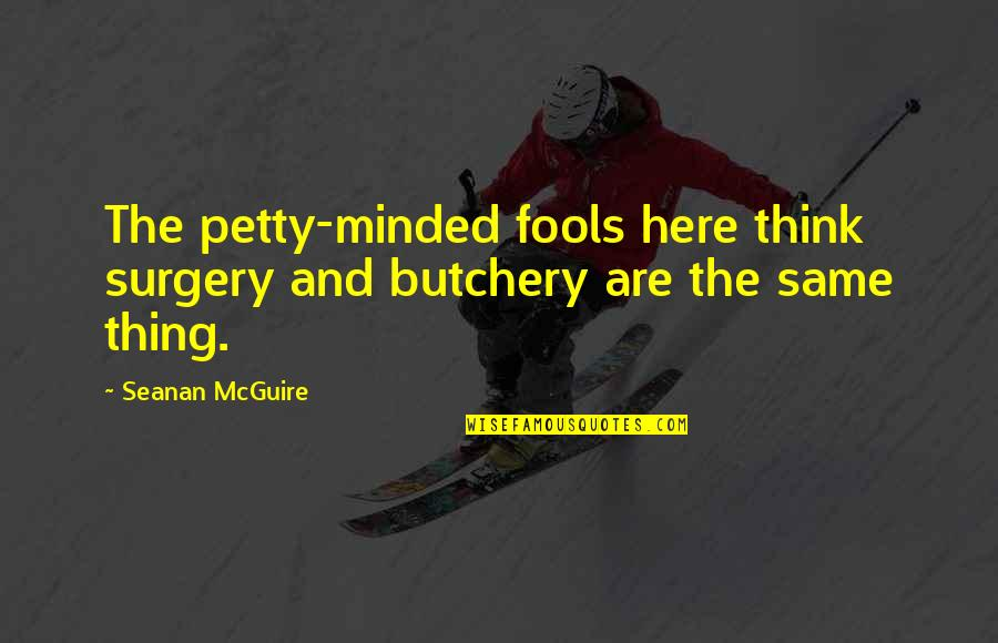 Seanan Mcguire Quotes By Seanan McGuire: The petty-minded fools here think surgery and butchery