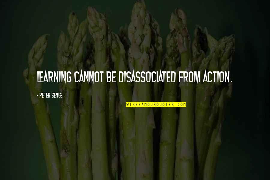 Seattle Seahawks Super Bowl Quotes By Peter Senge: Learning cannot be disassociated from action.