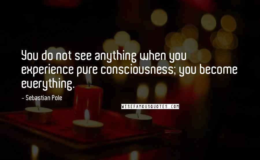 Sebastian Pole quotes: You do not see anything when you experience pure consciousness; you become everything.
