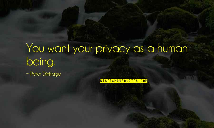 Sebastian Rulli Quotes By Peter Dinklage: You want your privacy as a human being.