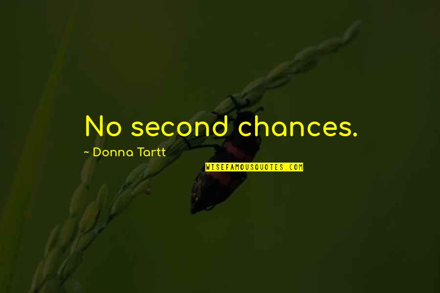 Second Chances Quotes By Donna Tartt: No second chances.
