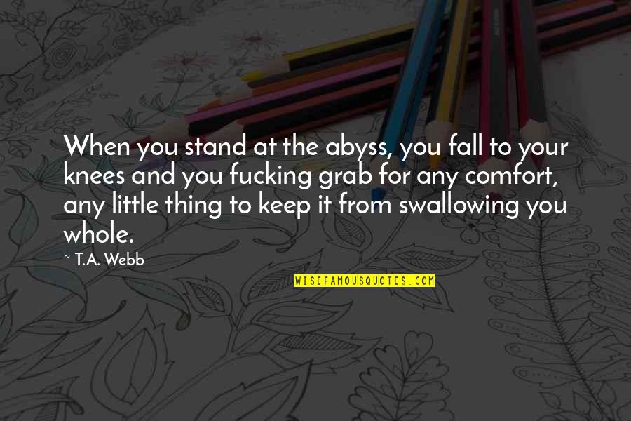 Second Chances Quotes By T.A. Webb: When you stand at the abyss, you fall
