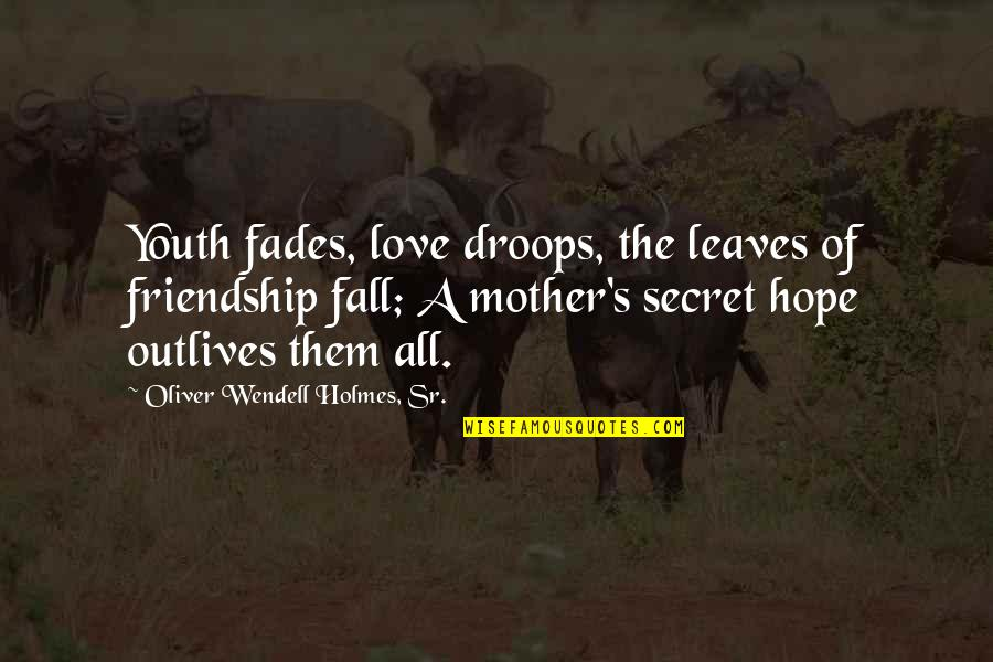 Secret Love Friendship Quotes By Oliver Wendell Holmes, Sr.: Youth fades, love droops, the leaves of friendship