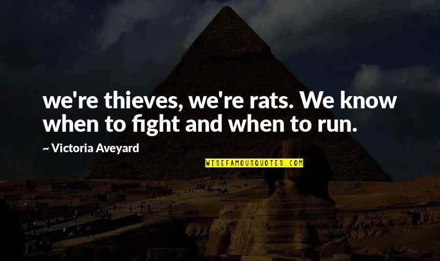 Secret Pro Ana Quotes By Victoria Aveyard: we're thieves, we're rats. We know when to