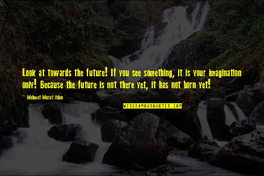 See The Future Quotes By Mehmet Murat Ildan: Look at towards the future! If you see