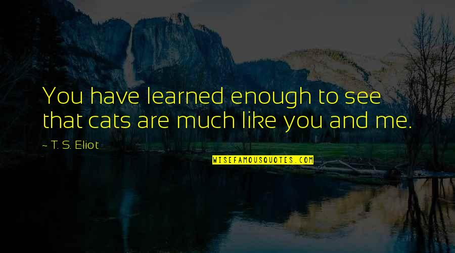 See You Quotes By T. S. Eliot: You have learned enough to see that cats