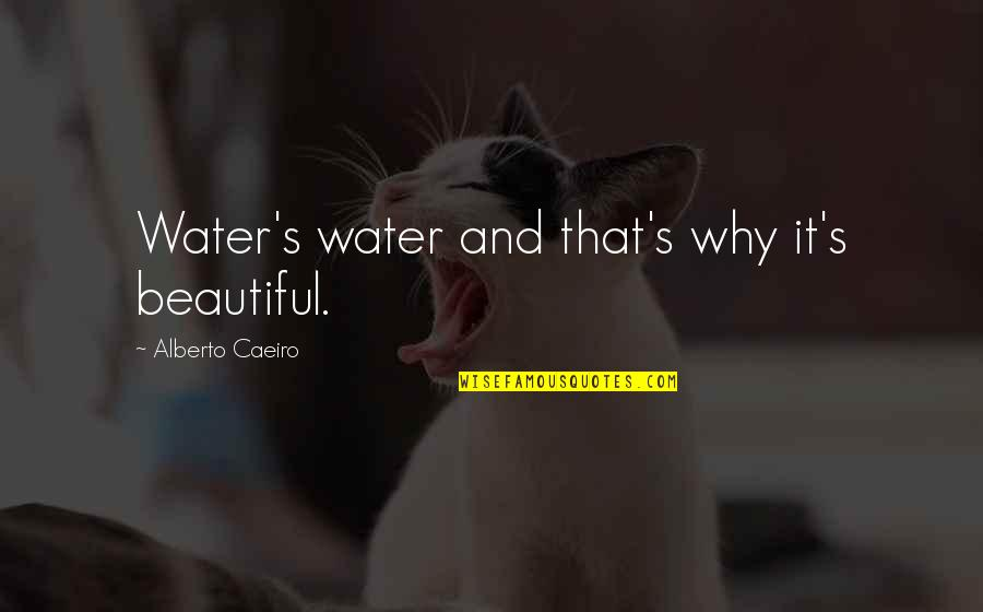 Seeing Beauty Quotes By Alberto Caeiro: Water's water and that's why it's beautiful.