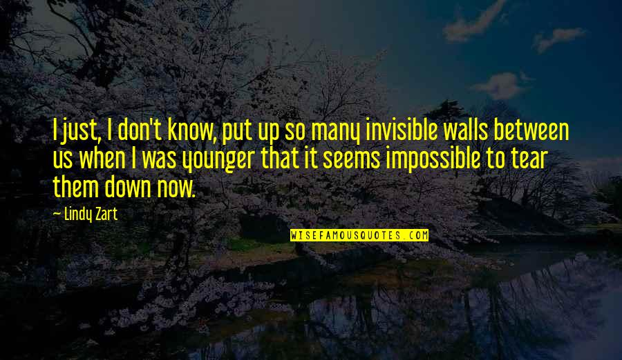 Seems Impossible Quotes By Lindy Zart: I just, I don't know, put up so