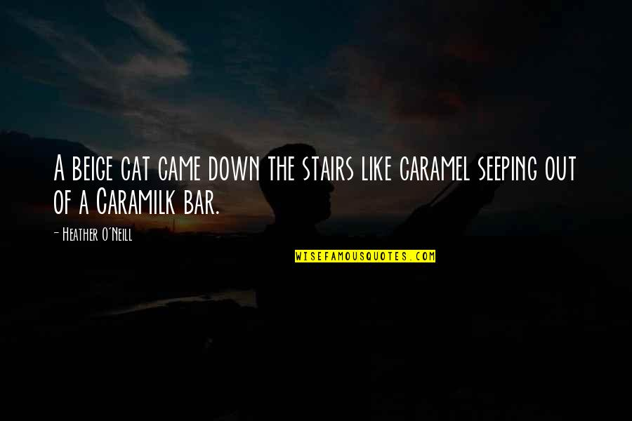 Seeping Quotes By Heather O'Neill: A beige cat came down the stairs like