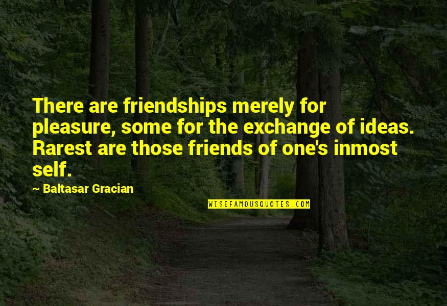 Self And Friends Quotes By Baltasar Gracian: There are friendships merely for pleasure, some for