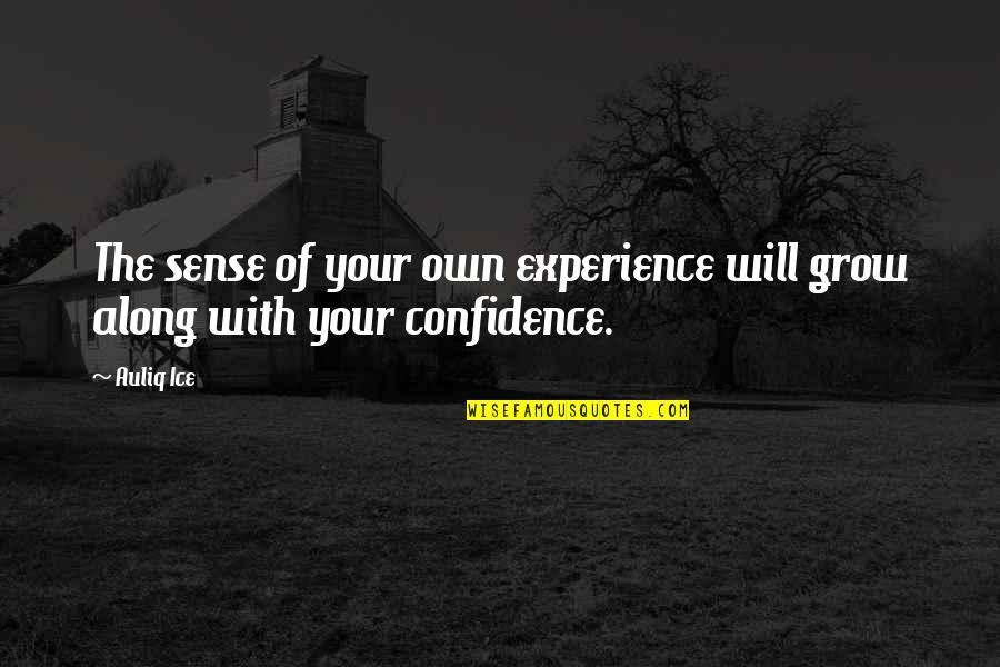 Self Confidence Quotes By Auliq Ice: The sense of your own experience will grow