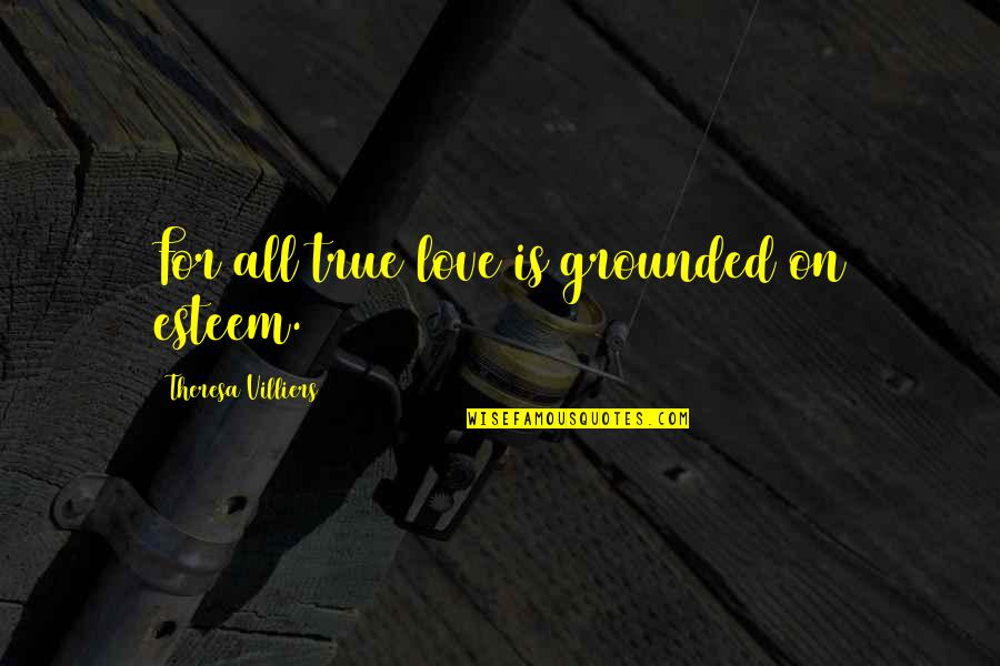 Self Employed Motivational Quotes By Theresa Villiers: For all true love is grounded on esteem.