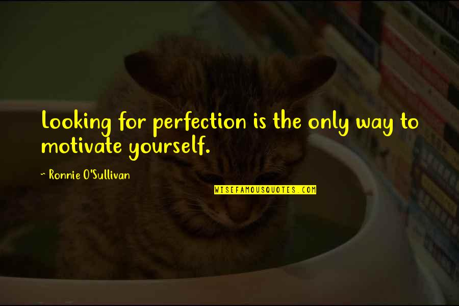 Selfish Peoples Quotes By Ronnie O'Sullivan: Looking for perfection is the only way to
