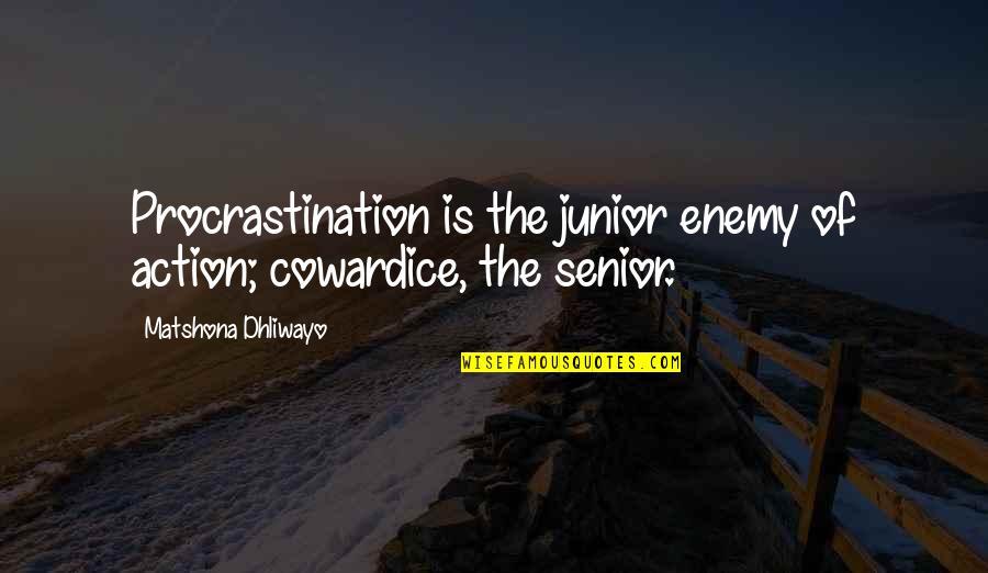 Senior Junior Quotes By Matshona Dhliwayo: Procrastination is the junior enemy of action; cowardice,