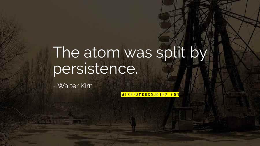 Sensei Quotes By Walter Kirn: The atom was split by persistence.