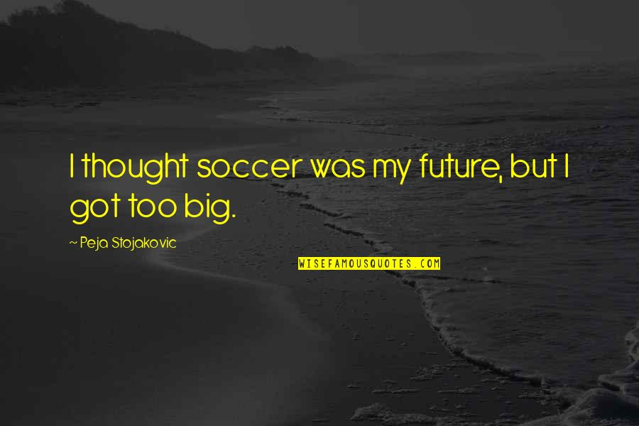 Sentimental Death Quotes By Peja Stojakovic: I thought soccer was my future, but I