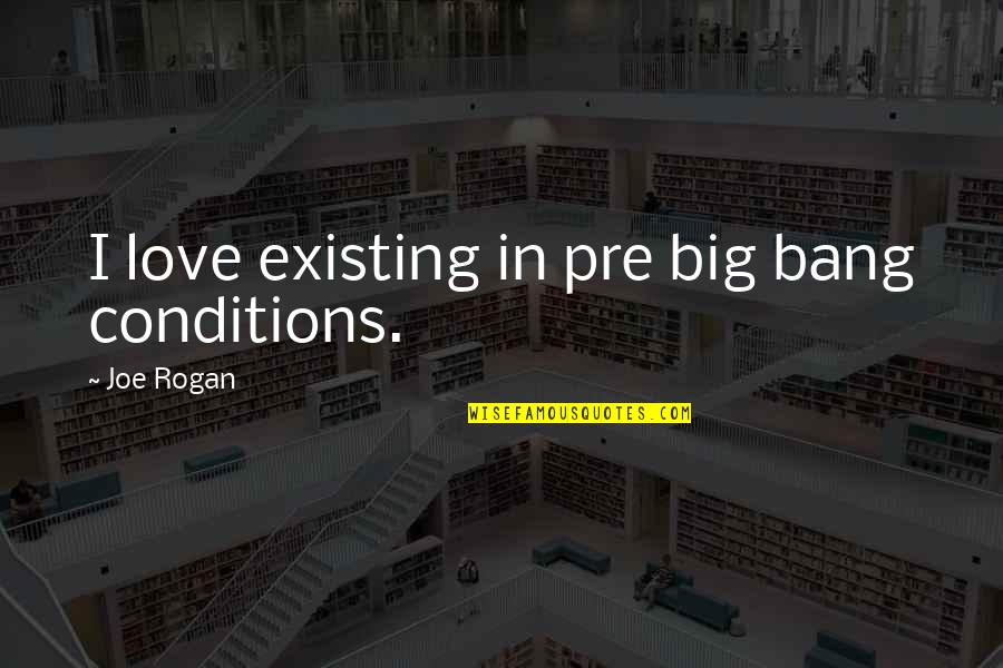 Ser Oswell Whent Quotes By Joe Rogan: I love existing in pre big bang conditions.