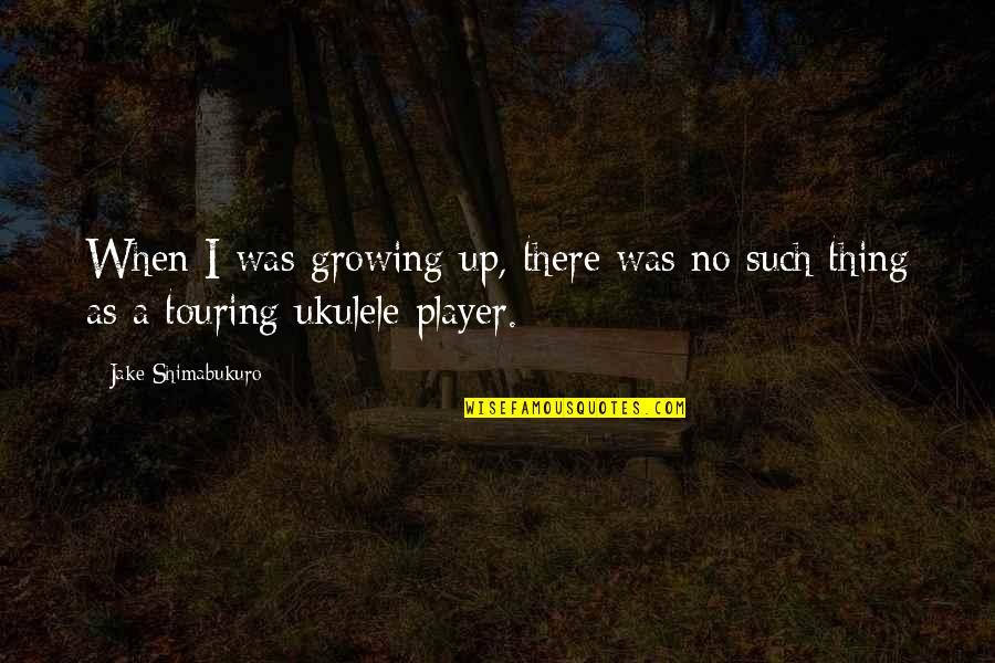 Serious Face Quotes By Jake Shimabukuro: When I was growing up, there was no