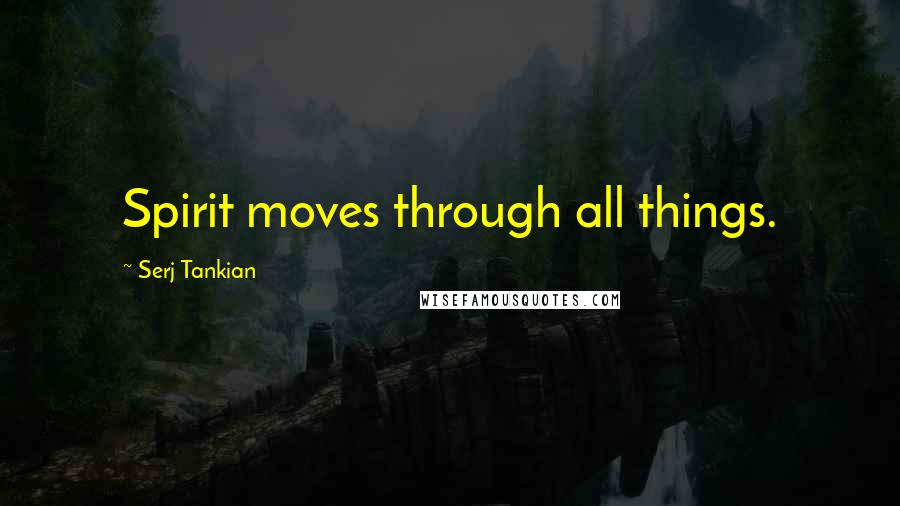 Serj Tankian quotes: Spirit moves through all things.
