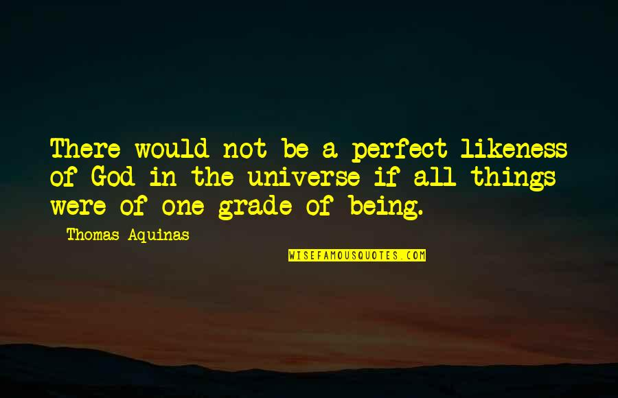 Serving The Lord Bible Quotes By Thomas Aquinas: There would not be a perfect likeness of