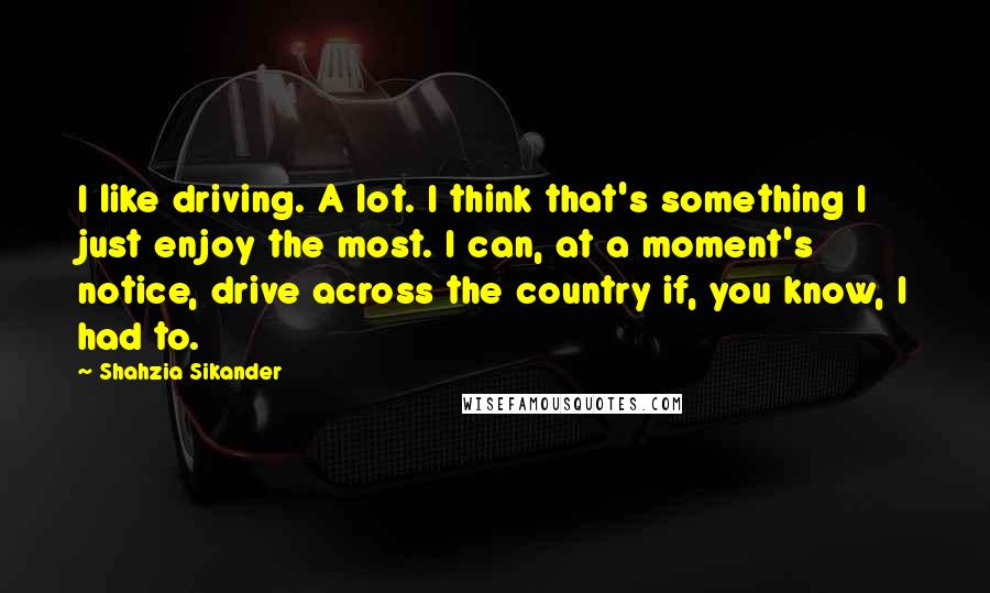 Shahzia Sikander quotes: I like driving. A lot. I think that's something I just enjoy the most. I can, at a moment's notice, drive across the country if, you know, I had to.