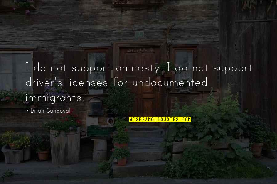 Shakespeare Lawyers Quotes By Brian Sandoval: I do not support amnesty. I do not
