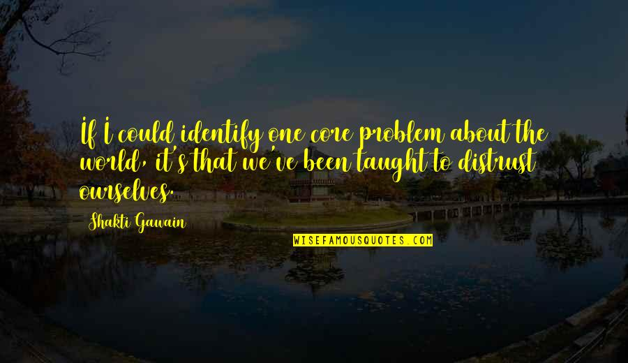 Shakti Quotes By Shakti Gawain: If I could identify one core problem about