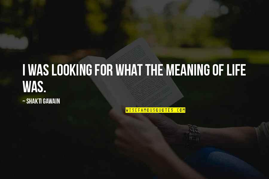 Shakti Quotes By Shakti Gawain: I was looking for what the meaning of