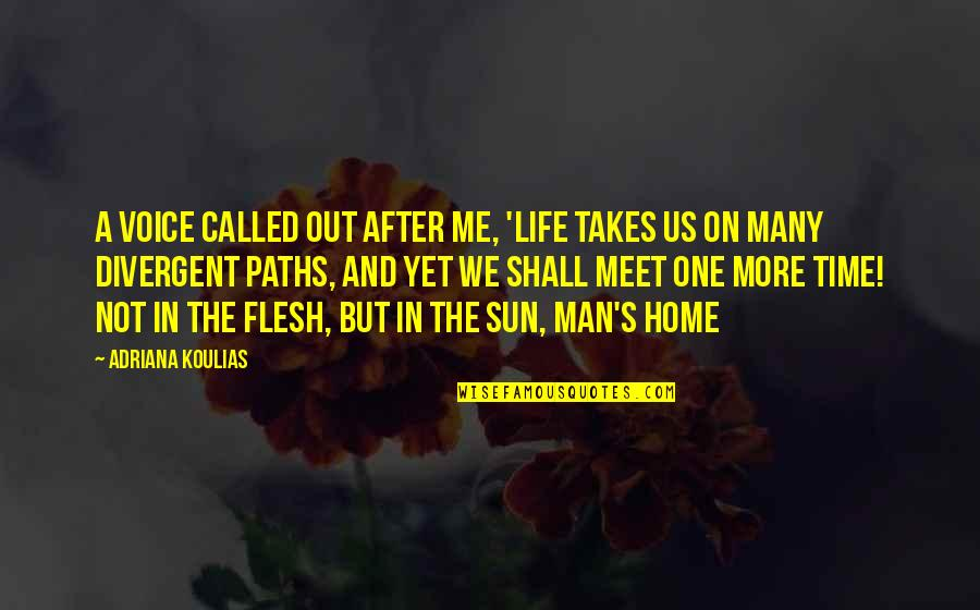 Shall We Meet Quotes By Adriana Koulias: A voice called out after me, 'life takes