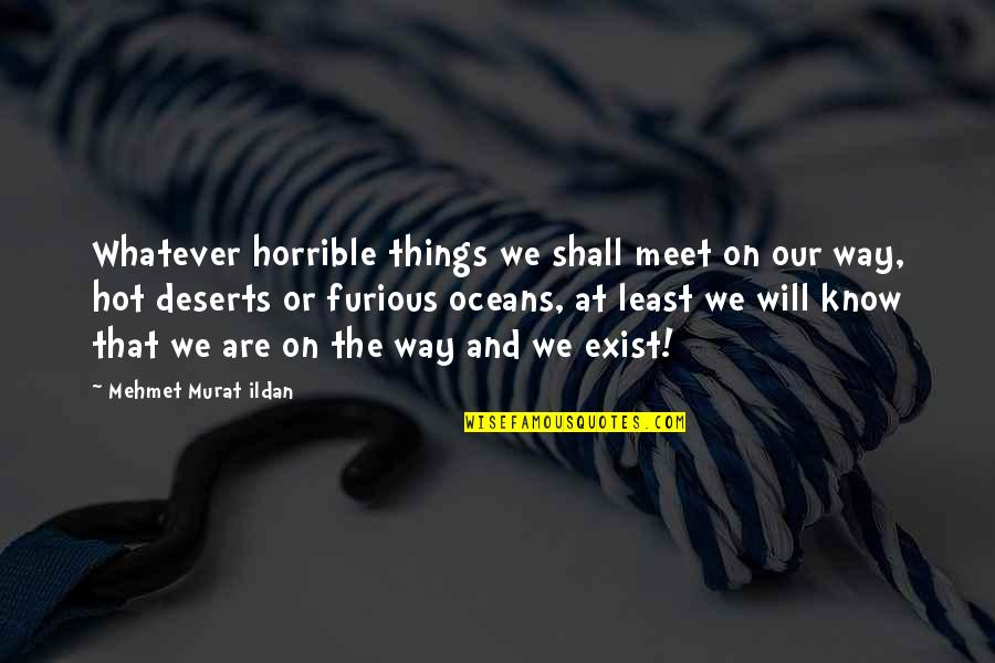 Shall We Meet Quotes By Mehmet Murat Ildan: Whatever horrible things we shall meet on our