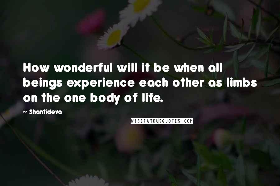 Shantideva quotes: How wonderful will it be when all beings experience each other as limbs on the one body of life.