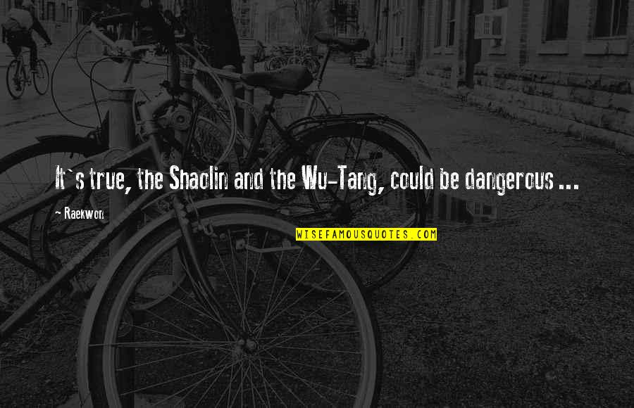Shaolin And Wu Tang Quotes Top 12 Famous Quotes About Shaolin And