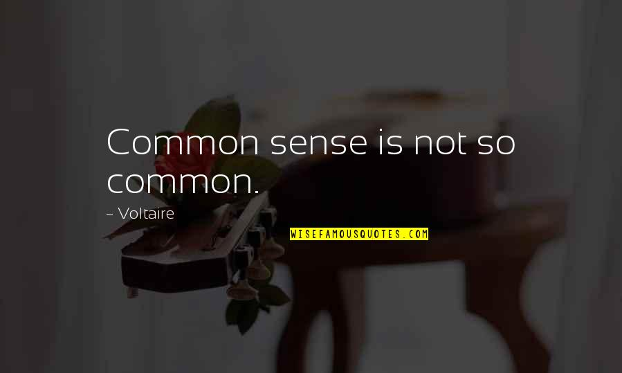Shapewear Quotes By Voltaire: Common sense is not so common.