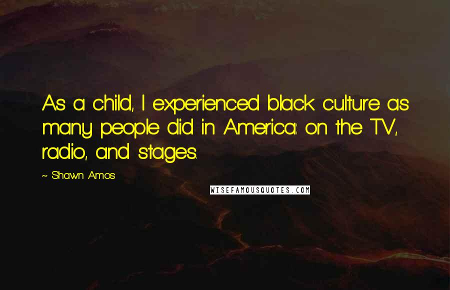 Shawn Amos quotes: As a child, I experienced black culture as many people did in America: on the TV, radio, and stages.