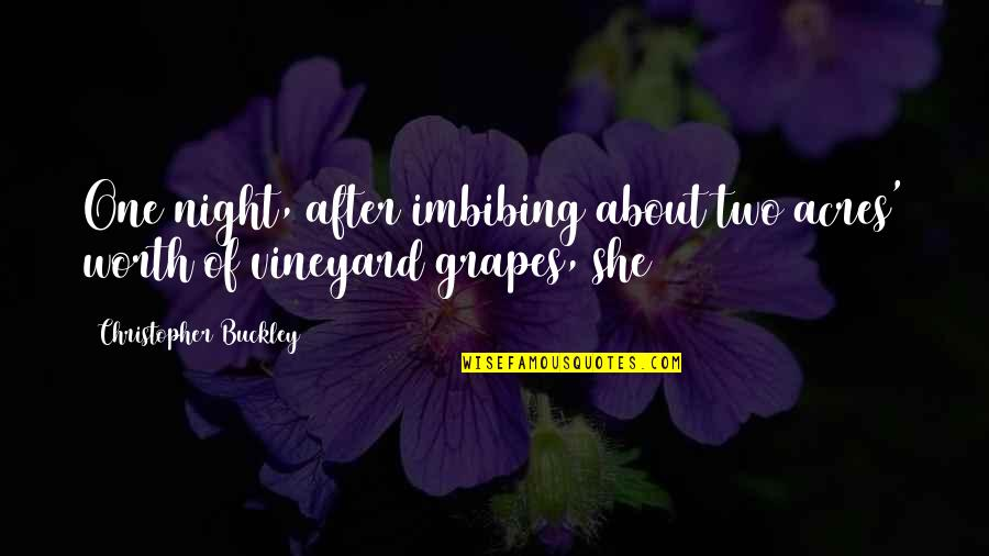 She Is Not Worth It Quotes By Christopher Buckley: One night, after imbibing about two acres' worth