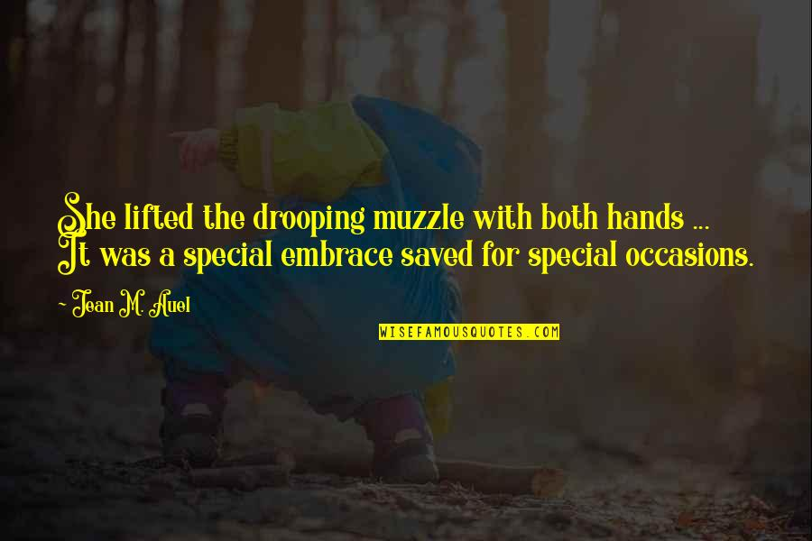 She Is Special Quotes By Jean M. Auel: She lifted the drooping muzzle with both hands