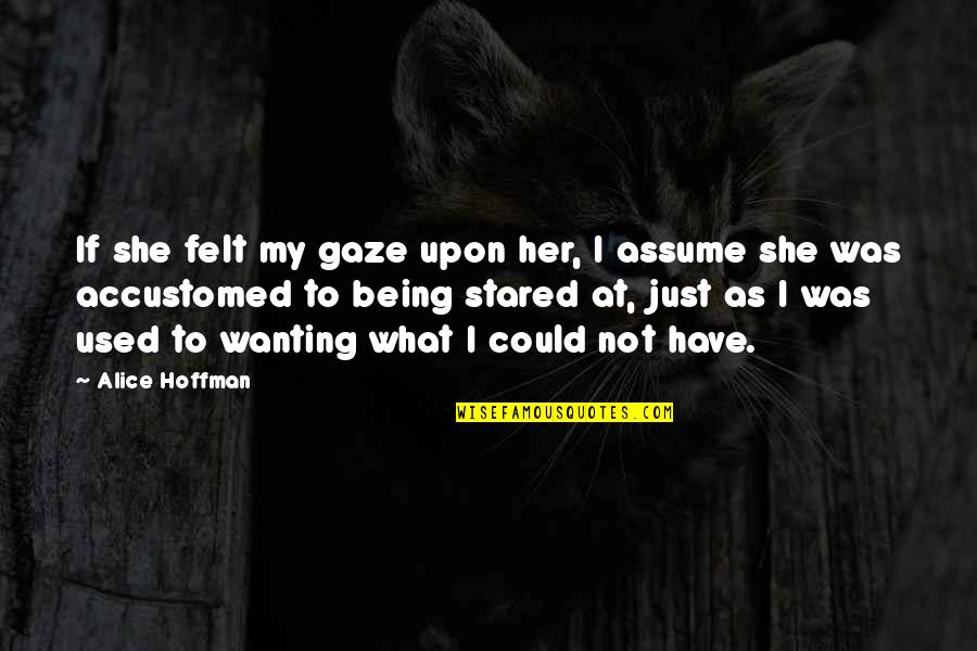 She Used To Quotes By Alice Hoffman: If she felt my gaze upon her, I