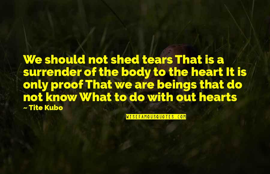Shed Your Tears Quotes By Tite Kubo: We should not shed tears That is a