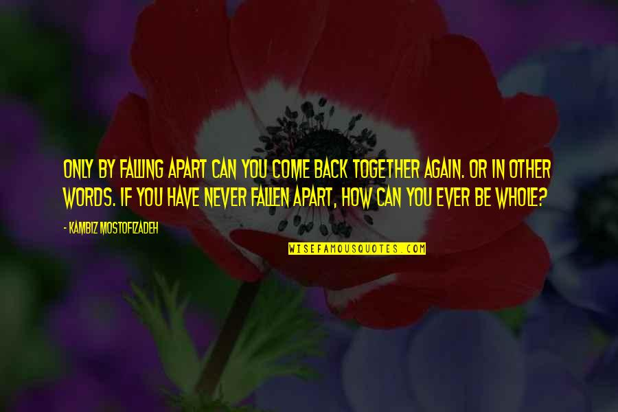 Shedares Quotes By Kambiz Mostofizadeh: Only by falling apart can you come back