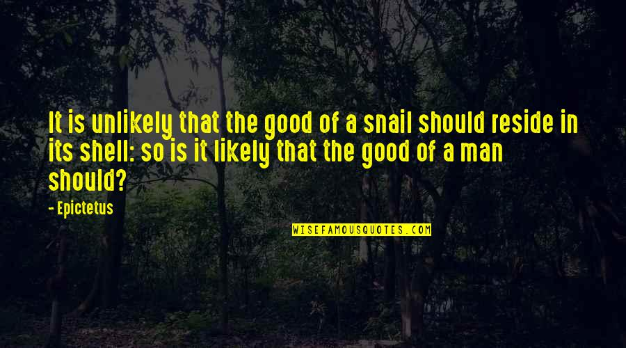 Shells Quotes By Epictetus: It is unlikely that the good of a