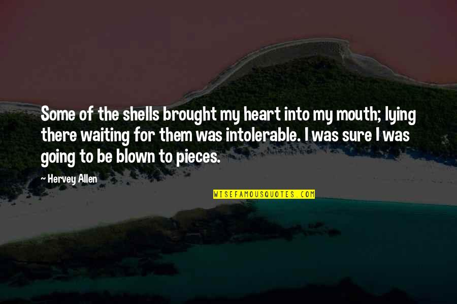 Shells Quotes By Hervey Allen: Some of the shells brought my heart into